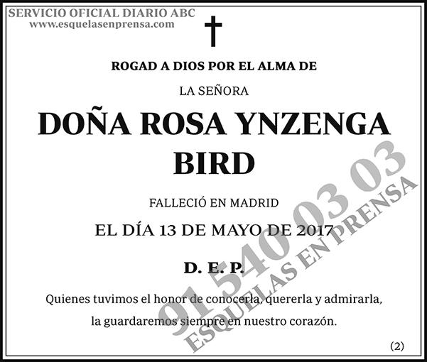 Rosa Ynzenga Bird